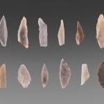 Diverse mesolithische spitsen van de vindplaats langs de Vledder AA. Het vondstmateriaal van de site bestrijkt een hele lange periode. Van Mesolithicum tot ijzertijd.