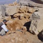 werkzaamheden voetstuk leeuw op het oostterras van de nemrud