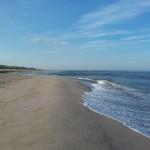 Kustlijn tweede Maasvlakte